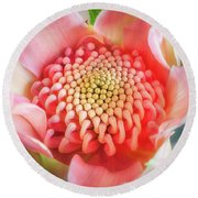 Wonderful Bright Pink Waratah Bud Round Beach Towel
