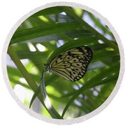 Wonderful Look At A Tree Nymph Butterfly In Foliage Round Beach Towel