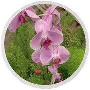 Wonderful Orchid Round Beach Towel