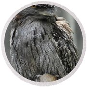 Wonderful Patterned Feathers On A Tawny Frogmouth Bird Round Beach Towel