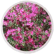 Wonderful Pink Azaleas Round Beach Towel