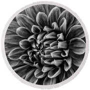 Wonderful Tones Dramantic Dahlia Round Beach Towel