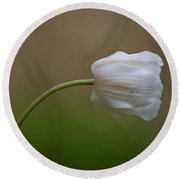 Wood Anemone 4 Round Beach Towel