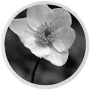 Wood Anemone 6 Round Beach Towel