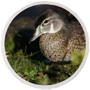Wood Duck Female Round Beach Towel