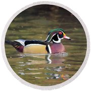 Wood Duck In A Pond Round Beach Towel