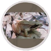 Wood Frog  Round Beach Towel