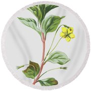 Wood Loosestrife Round Beach Towel
