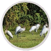 Wood Storks 2 - There Is Always One In A Crowd Round Beach Towel