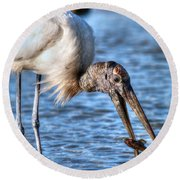 Wood Storks Breakfast Lunch And Dinner Round Beach Towel