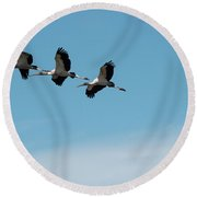Wood Storks In Flight Round Beach Towel