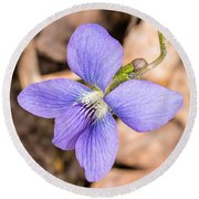 Wood Violet - Full View Round Beach Towel