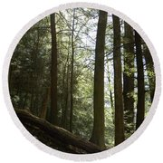 Wooded Serenity Round Beach Towel
