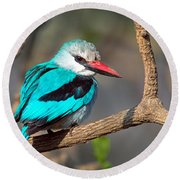 Woodland Kingfisher Halcyon Round Beach Towel