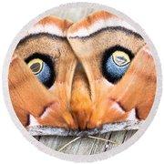 Woodland Moth Round Beach Towel