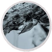 Woodpecker - El Salvador Round Beach Towel