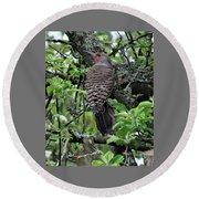 Woodpecker In The Apple Tree Round Beach Towel