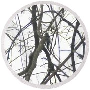 Woodpecker In The Forest Round Beach Towel