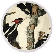 Woodpecker Round Beach Towel by John James Audubon
