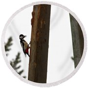 Woodpecker Workshop  Round Beach Towel