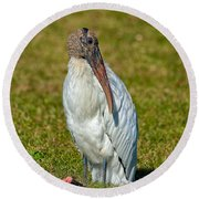 Woodstork On The Lookout Round Beach Towel