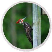 Woody Woodpecker Round Beach Towel