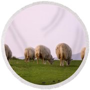 Wooly Bottoms Round Beach Towel