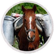 Work Horse At The Azores Round Beach Towel