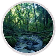 Wyeth Creek Round Beach Towel