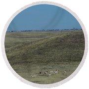 Wyoming Pronghorns Round Beach Towel
