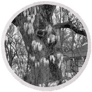 Wysteria Tree In Black And White Round Beach Towel