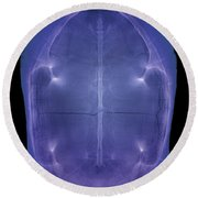 X-ray Of A Turtle Shell Round Beach Towel