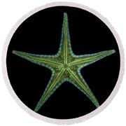 X-ray Of Starfish Round Beach Towel