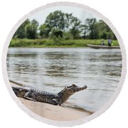 Yacare Caiman On Beach With Passing Boat Round Beach Towel