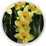 Yellow And Orange Daffodil  #2 Round Beach Towel
