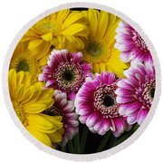 Yellow And Pink Gerbera Daisies Round Beach Towel