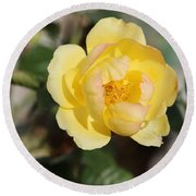 Yellow And Pink Tipped Rose Round Beach Towel