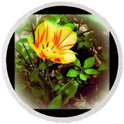 Yellow And Red Tulip Round Beach Towel