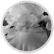 Yellow And White Iris In Bw Round Beach Towel