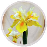 Yellow And White Iris Textured Round Beach Towel