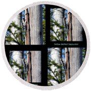 Yellow-bellied Collage With Text Round Beach Towel