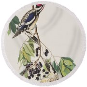 Yellow Bellied Woodpecker Round Beach Towel