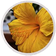 Yellow Belly Round Beach Towel