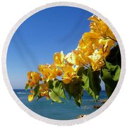 Yellow Bougainvillea Over The Mediterranean On The Island Of Cyprus Round Beach Towel