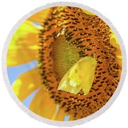 Yellow Butterfly And Sunflower Round Beach Towel