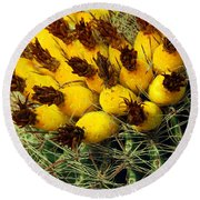 Yellow Cactus Round Beach Towel