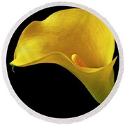 Yellow Calla Lily In Black And White Vase Round Beach Towel by Garry Gay