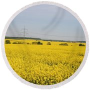 Yellow Canola Field Round Beach Towel