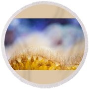 Yellow Coral Reef Macro Round Beach Towel