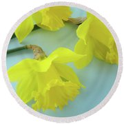 Yellow Daffodils Artwork Spring Flowers Art Prints Nature Floral Art Round Beach Towel